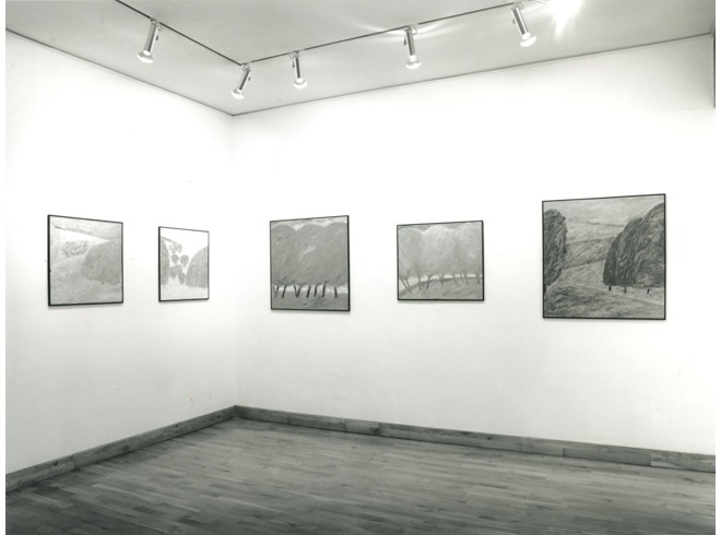 <p>JOHN D. EDWARDS Installation View</p>