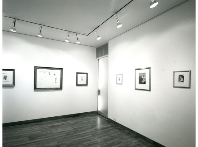 THE GOLDEN AGE OF COLLAGE Installation View