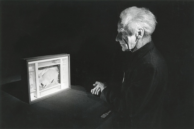 Joseph Cornell looking at the American Rabbit in The Metropolitan Museum or Art, 1972
